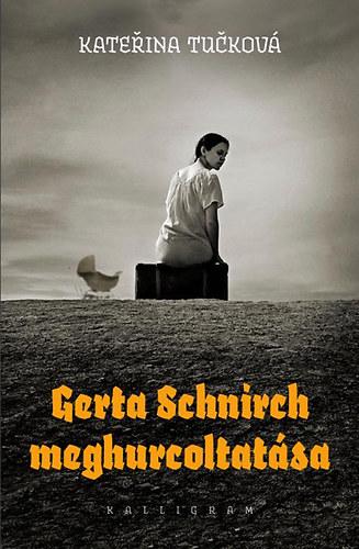 Gerta Schnirch meghurcoltatása Book Cover