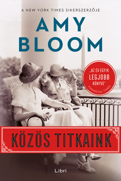 Közös titkaink Book Cover