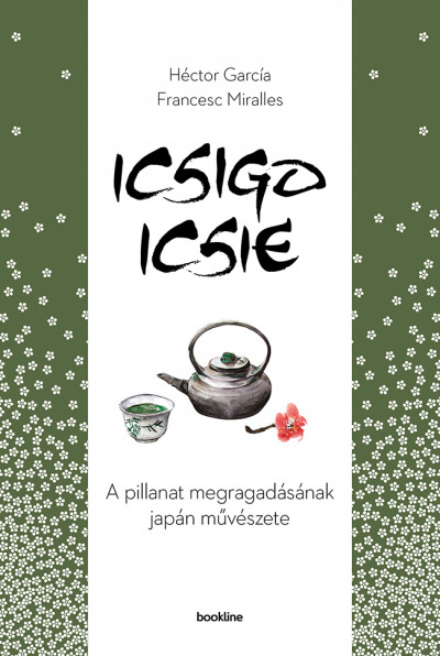 Icsigo-icsie Book Cover